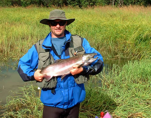 Nice COHO Silver Salmoan on the Chilikadrotna River Float Trip - ALASKA RAFT CONNECTION